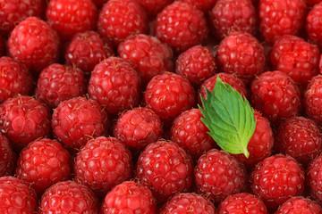 Ripe sweet raspberries, close up