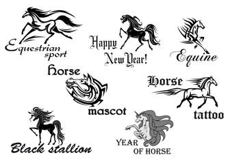 Black horse stallions mascots