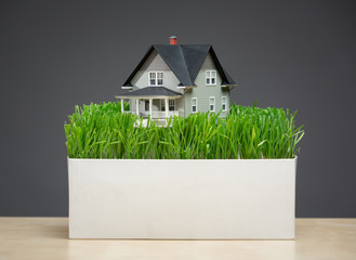 Close up of home model with green grass on grey background