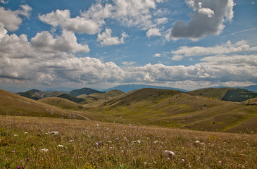 vallata fiorita montagna italia