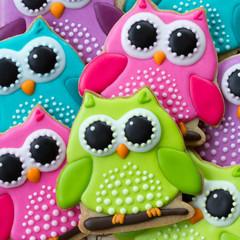Wall Mural - Owl cookies