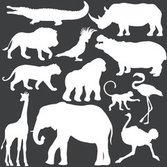 Vector set of white tropical animals silhouettes