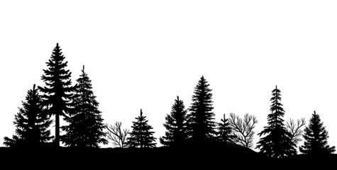 Schwarze Silhouette eines Waldes, Vektor und freigestellt