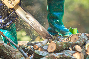 Cut firewood for home with a chainsaw