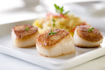 Seared sea scallops with orzo and vegetables.