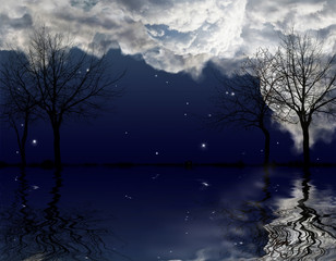 bare trees under dark sky with reflection