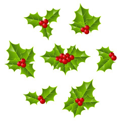 Set of holly leaves
