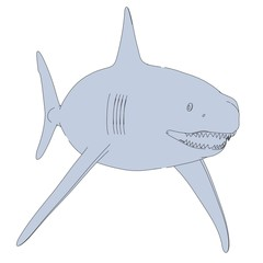 cartoon image of shark animal