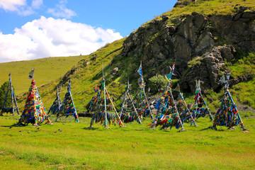 Shaman Adak Tree, prayer's flag, Mongolia