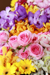 abstract background of  various kind of flowers