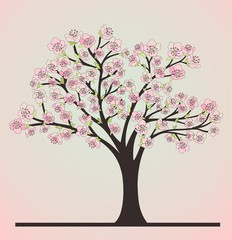 Cherry tree with blosoms