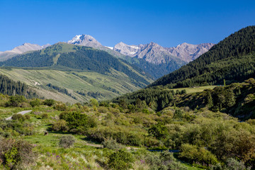 Fototapete - Landscape of high Tien Shan mountains