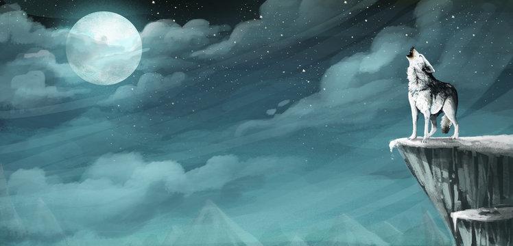 lobo de noche