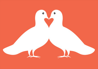 pair of doves in love, vector illustration, valentine card desig
