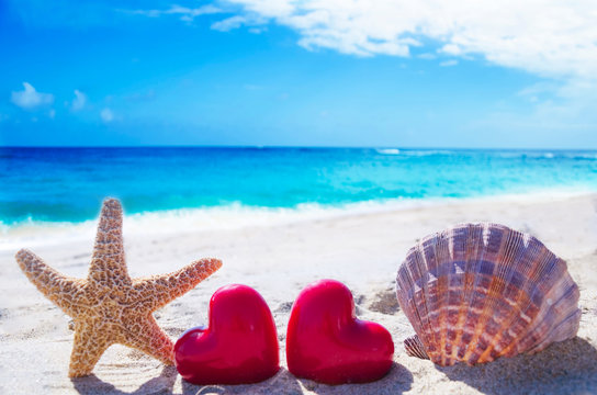 Starfish and seashell with hearts by the ocean