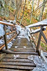 icy wooden bridge in winter