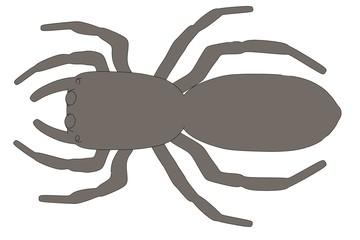 cartoon image of scalticus scenicus