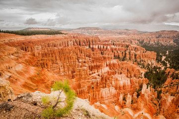 Bryce Canyon red amphitheater