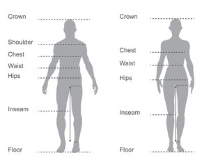 size chart, measurement diagram, body measurements for clothing