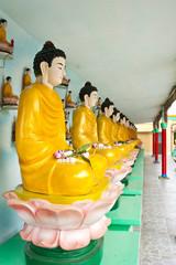 ฺBuddha in a row, Vietnam