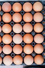 Eggs panel in Thailand.