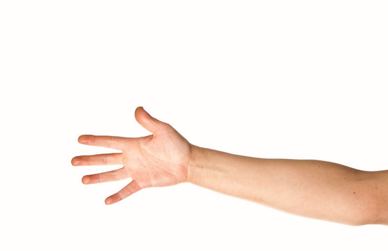 Arm and hand