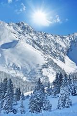 Wall Mural - Winter Alpine Landscape