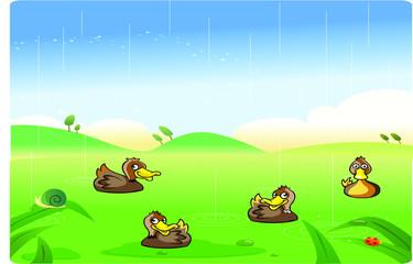 funny ducks cartoon playing in the rain