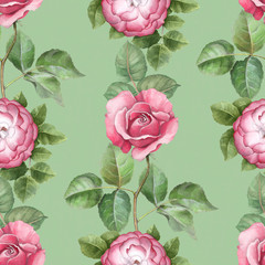 Watercolor pattern with rose illustration