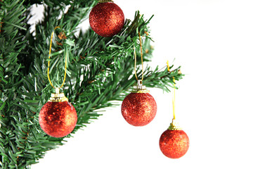 Red ball hanging on branch of Christmas tree.