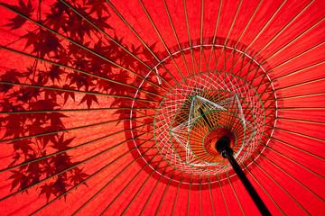 蛇の目傘にうつる紅葉