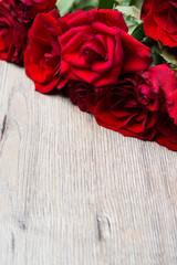 Rote Rosen mit viel Textfreiraum