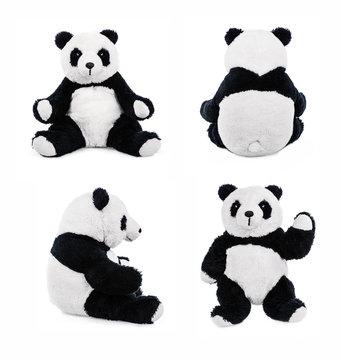 Stuffed animal panda bear or teddy bear
