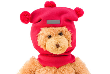 Teddy bear in winter knitted hat with pompons isolated on white