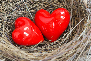Two red hearts in a bird nest