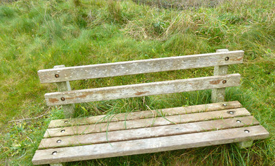 Old wooden bench in the grass at the beach