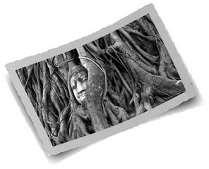photo ancienne, tête de Bouddha enchâssée