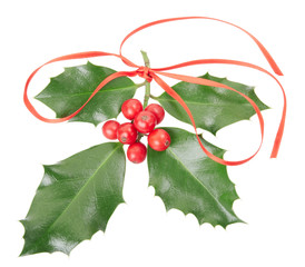 Holly with red ribbon decoration on white, clipping path