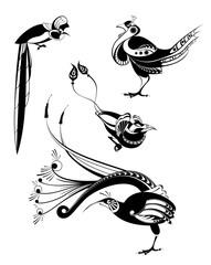 Vector original art bird silhouettes collection for design