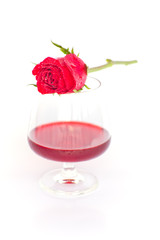 red rose with wine glass