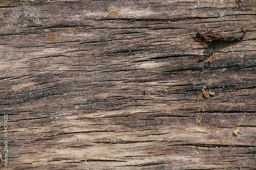 fond texture bois naturel photo libre de droits sur la banque d 39 images image. Black Bedroom Furniture Sets. Home Design Ideas