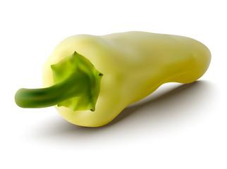 vector yellow pepper