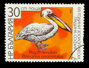 BULGARIA - CIRCA 1988: A stamp printed in BULGARIA, shows Great