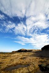 in spain  lanzarote  rock stone   coastline and summer