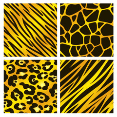 Golden Animal Print Collection