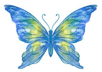 Бабочка акварельная на белом. Вариант 1.