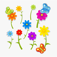 Flowers and Butterflies Isolated on White Background