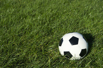 Classic Black and White Soccer Ball Football on Green Grass