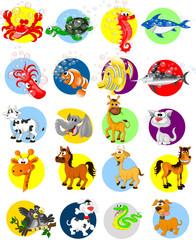 Animals Cartoon Collection