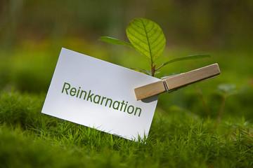 Reinkarnation Fototapete